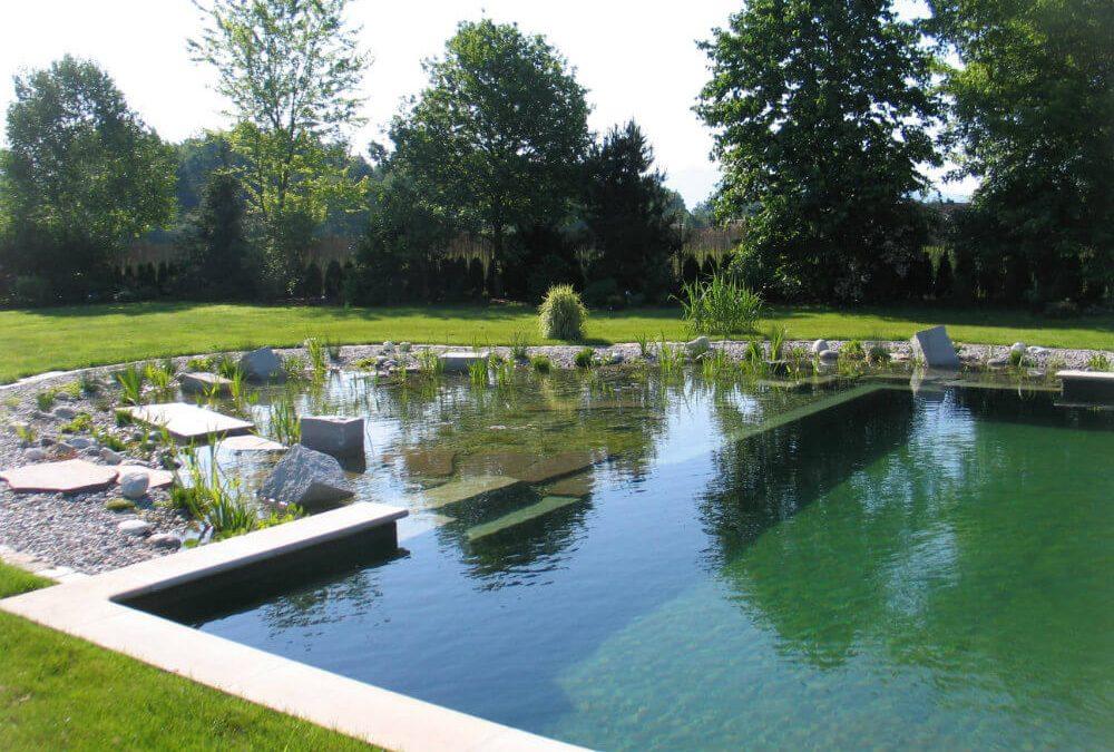 Por que fazer uma piscina natural em casa?